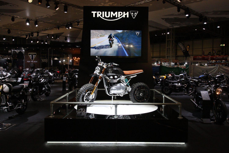 Triumph 05